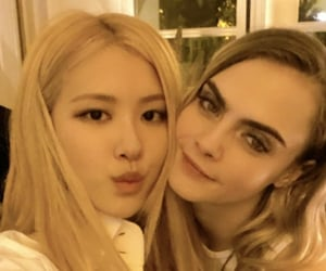 rose, Yves Saint Laurent, and cara delevingne image