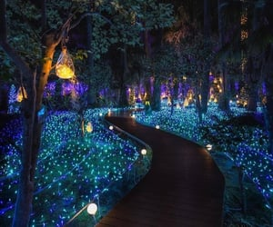 forest, garden, and lights image