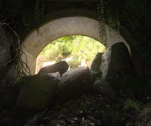 adventure, rock, and vines image