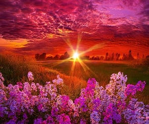 colorful, colors, and gorgeous image