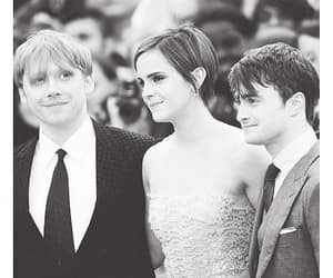 black and white, harry potter, and daniel radcliffe image