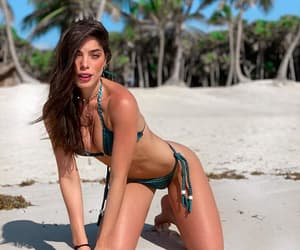 beach, beauty, and br image