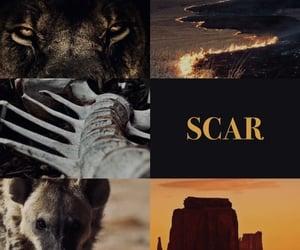 animals, scar, and disney image