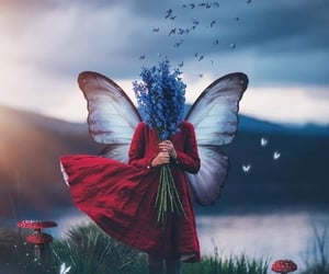butterflies, dreamy, and fantasy image