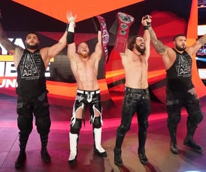 wwe, rezar, and the shield image