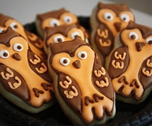 owl, Cookies, and food image