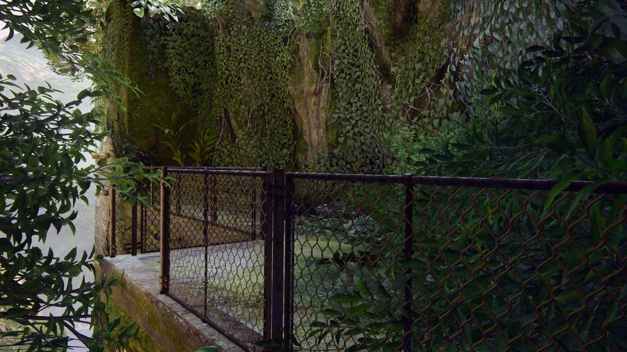 fence, flora, and jungle image