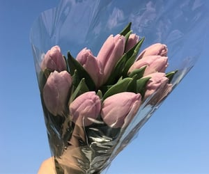 flowers, tulips, and pastel pink image