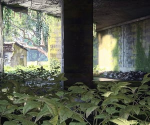 abandoned, green, and overgrown image