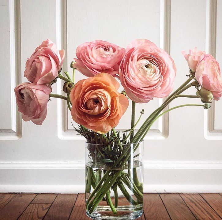 bouquet, decorating, and decoration image