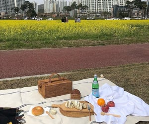 korea and picnic image