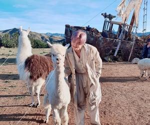 llama, purple hair, and rapmonster image