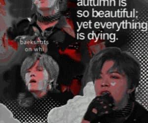 edit, kpop edit, and kpop aesthetics image