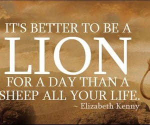 cover, lion, and life quote image