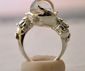 ring and jewelry image