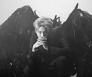 black and white, 김남준, and black swan image