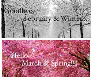 march, seasons, and february image