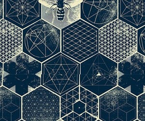 bees, geometric, and pattern image