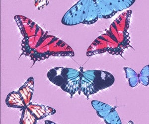 butterfly, wallpaper, and pink image