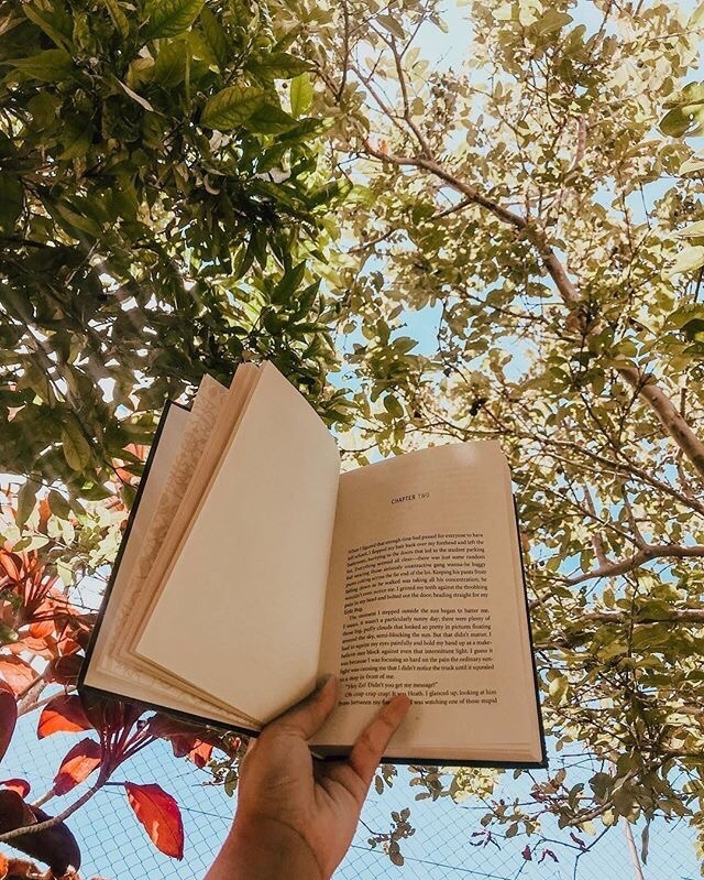 book, aesthetic, and nature image