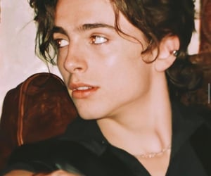 timothee chalamet, boy, and actor image