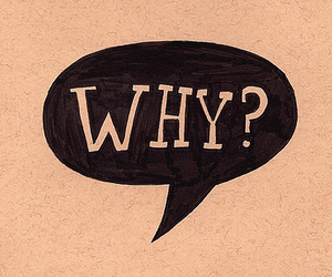 why, text, and why? image