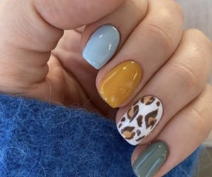 blue, color, and leopard image