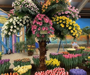 arrangements, beautiful, and beauty image