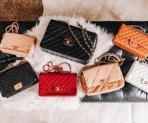 aesthetic, bag, and baggage image