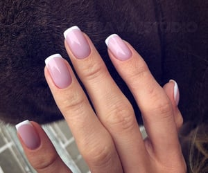 cool, french, and manicure image