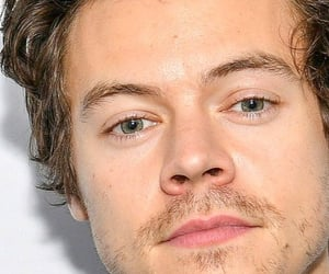 fine line, Harry Styles, and harry styles gif image