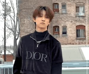 gif, Seventeen, and dispatch image