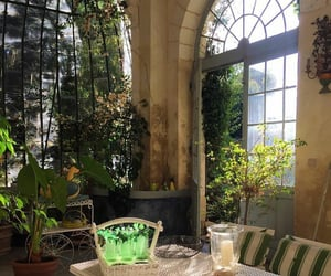 aesthetic, green house, and plants image