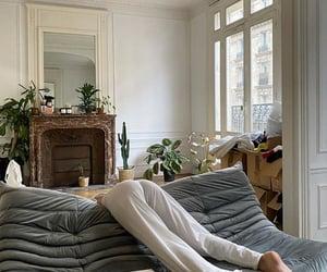 interior design and plants image