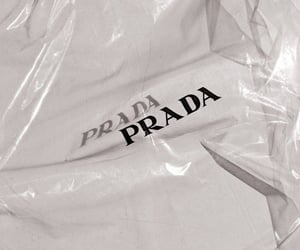 Prada, aesthetic, and orange image
