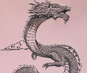 dragon, art, and asia image
