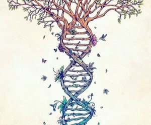 DNA and baum image