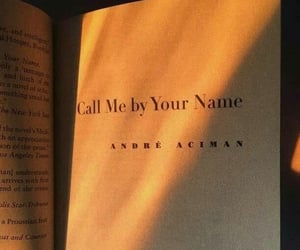 book, aesthetic, and call me by your name image