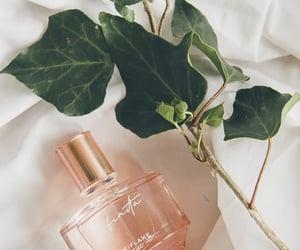 beauty, parfum, and perfumes image