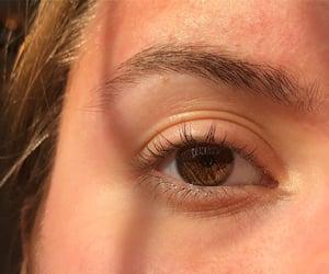 brown eye, eyebrow, and spring image