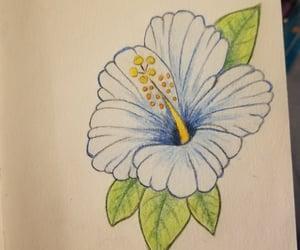art, tattoo idea, and hawaiian flower image