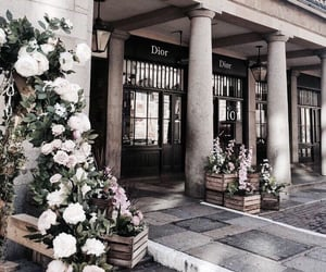 dior, city, and flowers image