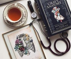 nurse and medecine image