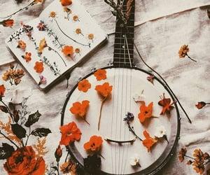 aesthetic and banjo image