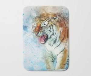 big cats, tiger, and zoo animals image
