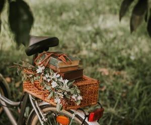 bicycle, bike, and nature image