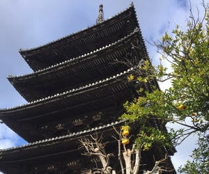 blue, gion, and japan image