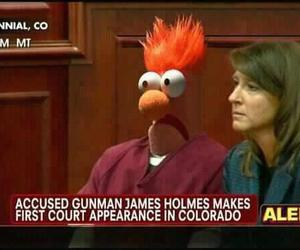 colorado, funny, and courthouse image