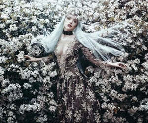 fantasy, fairytale, and flowers image