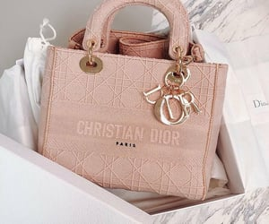 bag, dior, and Christian Dior image
